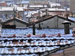 Snow on the roofs (magellano) Tags: neve snow tetto roof tegola shingle bologna italia italy casa home