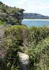 Dee Why Coastal Walk (philipbouchard) Tags: trail bluff cliff overlook beach deewhy coastalwalk curlcurl australia sydney newsouthwales northernbeaches pacificocean shore rocky vegetation scrub shrubs