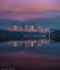 The Glow Show (Endless Reflection Photography) Tags: bellevue downtownbellevue bellevueskyline bellevuereflection bellevuerain endlessreflectionphotography ereflectionphotos cmerchant1 bellevuesunset seattle moodyphotography moodybellevue bellevuehistory whotelbellevue lincolnsquareexpansion kemperdevelopment meydenbauerbay one88bybosa one88bellevue lakewashington seattleseastside mercerisland seattlephotographer bellevuephotographer sunset rain cities citylife urban explore exploreeverything canon kingcounty snowflakelane