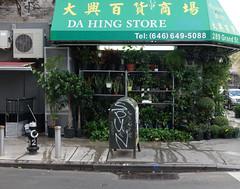 Hanging Garden (Blinking Charlie) Tags: dahingstore chinatown manhattan newyorkcity nyc newyork usa 2017 sonydscrx100m3 blinkingcharlie florist grandstreet eldridgestreet postalrelaybox awning tag tagging