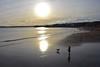 Walking the dog (Nige H (Thanks for 12m views)) Tags: nature landscape beach silhouette sunset sea torquay wave dog dogwalker walkingthedog reflection devon england seaside