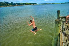 Pahi Beach 137 (C & R Driver-Burgess) Tags: teen young boy girls leap jump harbour wharf sea kaipara brother sister girlfriend nephew niece son daughter shorts halter top green blue clear sky sunny summer splash