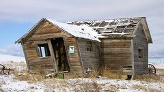 Unlikely Tornado Shelter (AmyEHunt) Tags: wood buildling tornado shelter snow decay abandoned house barn old west colorado homestead