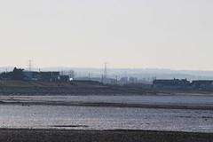 IMG_7019 (cindyincidentally) Tags: whitstable kent kentcoast britishbeach seaside seashore seasidetown
