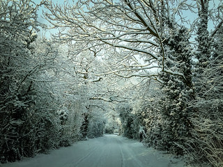 My drive to work
