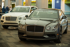 Pair of Bentleys (Roy Prasad) Tags: car automobile sanjose auto carshow prasad royprasad sony a7r a7rm3 convention opulence luxury expensive bentley