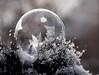 starry, starry bubble (marianna_a.) Tags: p1750456 frozen soap bubble macro ice crystals bokeh marianna armata abstract winter canada play fun