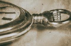 A Matter Of Time Monochrome (dietmar-schwanitz) Tags: omega watch uhr taschenuhr pocketwatch zeit time alt old vintage nikcollection filter heliconfocus focusstacking marumi manfrotto makro macro monochrome mono monochrom sw schwarzweis blackwhite bw closeup nahaufnahme sepia tönung lightroom nikond750 nikonafsmicronikkor105mmf28ged dietmarschwanitz
