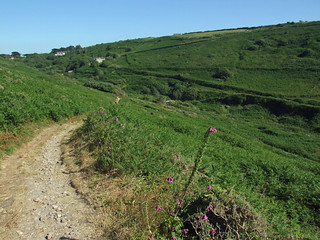Cot valley, from coast path rather inland, looking up valley