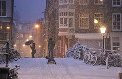 Bright lights, white nights in Amsterdam (B℮n) Tags: eerstebloemdwarsstraat amsterdam snow covered bikes bycicles holland netherlands canals winter cold wester church jordaan street anne frank house dutch people scooter gezellig cafés snowy snowfall atmosphere colorful windows walk walking bike cozy boat light rembrandt corner water canal weather cool sunset file celcius mokum pakhuis grachtengordel unesco world heritage sled sleding slee seagulls meeuwen bycicle 1°c shadows sneeuw slippery glad flakes handheld wind nieuweleliestraat café denieuwelelie heineken snowman rolling sneeuwpop rollen 100faves topf100 200faves topf200