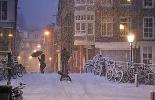 Bright lights, white nights in Amsterdam