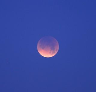 DSC_7688e ~ The Moon