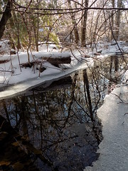 February - Winter Photo 6 (Stans Gallery) Tags: winter snow water ice trees tree forest woods reflections reflection brook creek stream february mirror
