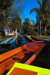 Xochimilco 206 (L Urquiza) Tags: xochimilco traigineras mexico cdmx ciudad de colores canales