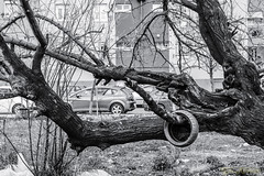 vallekeando (profesorxproyect) Tags: vallecas madrid streetphotography spain callejera fotografiacallejera bw byn blackandwhite blancoynegro bn abandonado nikon d7100 50mm