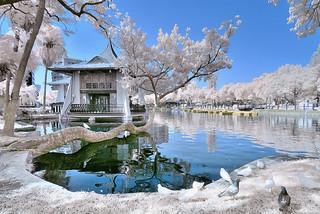 台中公園~湖心亭紅外線~  Taichung park 720um IR