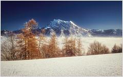 Traunstein (Karl Glinsner) Tags: landschaft landscape österreich austria oberösterreich upperaustria salzkammergut gmunden berge gebirge mountains winter snow mist fog nebel gmundnerberg outdoors