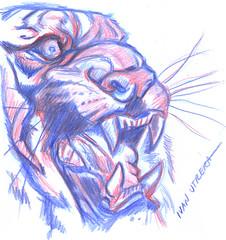 tigre en lapices de colores (ivanutrera) Tags: tigre tiger draw dibujo drawing dibujoenlapicesdecolores lapicesdecolores sketch sketching wild wildlife animal felino minino