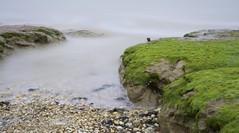 Creeping Tide. (fjnige) Tags: blackwater shore shoreline river estuary essex bradwell longexposure nikon d7100 water shells