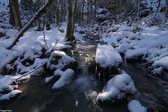 Neige et Glace sur le ruisseau du Dard de Reugney (francky25) Tags: glace et neige sur le ruisseau du dard de reugney franchecomté doubs hiver