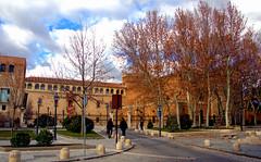 ALCALA DE HENARES MADRID 7786 27-1-2018 (Jose Javier Martin Espartosa) Tags: alcaladehenares españa wordheritagesite patrimoniodelahumanidad madrid spain