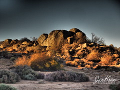 Evening (jan-krux photography - thx for 2.5 Mio+ views) Tags: landscape landschaft springbok northerncape nordkap southafrica suedafrika felsen rocks boulders barren rauh abend evening sundown sonnenuntergang ruhig quiet still tree bush omd olympus em1mkii em1