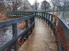 ABC. Angles, Bridge and Curves!!! 11/1 (LeanneHall3 :-)) Tags: 31daysofjanuary challenge eastpark bridge hull kingstonuponhull lake ducks seagulls birds curves angles landscape samsung galaxys7edge