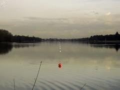 Boe. Idroscalo (diegoavanzi) Tags: idroscalo seaplane base lago lake acqua water riflessi reflections nuvole clouds sony hx300 bridge milano milan italia italy lombardia lombardy