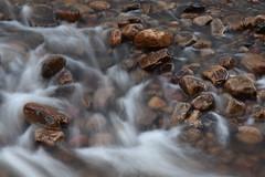 Midwinter light (ambo333) Tags: rivergelt brampton hayton cumbria england uk middlegeltbridge capontree capontreeroad water river stream h2o