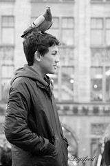 Je laat je toch niet op je kop zitten. (Digifred.nl) Tags: digifred 2018 amsterdam nikond500 nederland netherlands holland iamsterdam straat street city grachten streetphotography blackwhite blackandwhite monochrome toeristen tourists candid people portret portrait damsquare dove duif bird