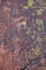 Sinagua Petroglyphs (Edmonton Ken) Tags: sinauga petroglyphs rock desert patina lichen green red arizona travel destination aboriginal native records symbols drawing mystery first nations ancestors agriculture religion crop planting ancient energy vortex new age spritual sedona belief
