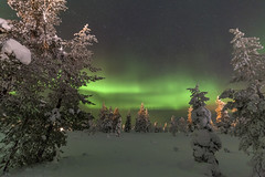 Nordic Forest (Joost10000) Tags: northern lights northernlights aurora auroraborealis borealis magnetic mysterious beauty forest snow ice trees green outdoors winter cold chill sky stars nature finland suomi europe canon canon5d eos saariselka lapland arctic