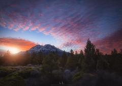 Mt. Shasta in the Morning (wesome) Tags: adamattoun mtshasta