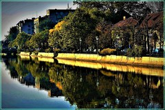 Autumn reflexions in Bucharest: Dambovita river (Ioan BACIVAROV Photography) Tags: autumn reflexions bucharest dambovita river water toamna tree building