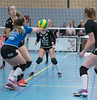 41170171 (roel.ubels) Tags: flynth fast nering bogel vc weert sint anthonis volleybal volleyball indoor sport topsport eredivisie 2018 activia hal