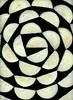 58721.01 Cucurbita pepo var. cylindrica (horticultural art) Tags: horticulturalart cucurbitapepovarcylindrica cucurbitapepo zucchini slices spiral vegetable food