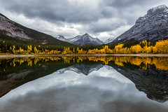 Autumn Reflections (murph le) Tags: autumn alberta reflections kananaskis landscape light mountains clouds mood atmosphere colours leaves change wedgepond