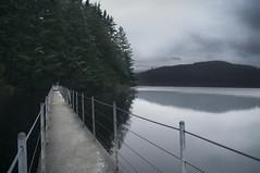 22/365 (Ell@neese) Tags: nature trees water lake canada british columbia 365 travel explore