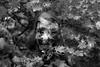 Paula autunm shoot (spencerrushton) Tags: spencerrushton spencer rushton canon5dmkiii 5dmk3 5dmkiii canon canonlens canonl colour 100mm canon100mmf28lmacroisusm efcanon100mmf28lmacroisusm walk wood woman windsor woods autumn beautiful femalemodel female portrait pose park people purpleport pretty sexy hot hotgirl teenmodel teen teengirl paulaagnes lady garden gardens green girl nissinflash fillinflash dethoffield dayout dslr daylight day blackandwhite black bw women white monochrome