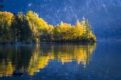 Hallstatt Reflacitons (Chamikajperera) Tags: reflections landscape austria europe canon travel water lake hallstatt beautiful autum yellow trees forest