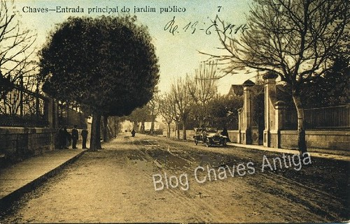 madalena1_1915