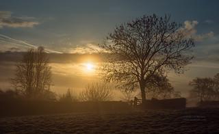 Misty Morning in Ashey