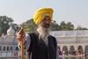 Aladin (S. Torres) Tags: gurudwarabanglasahib inde india delhi olddelhi temple sikh