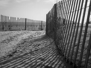 Rehoboth Beach: Fences