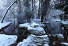 Bois de Vincennes 06.02.2018 0J5A9392 (MUMU.09) Tags: boisdevincennes06022018 canoneos7dmarkii 1635mm neige hiver bois ruisseau vincennes france