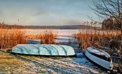 On the shore. (augustynbatko) Tags: shore boats lake nature landscape winter sky clouds reeds ice snow tree