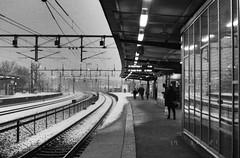 Älvsjö Daily Platform Photo (Mister.Marken) Tags: nikonf4 nikonafnikkor 50mm114 kodaktmax tmy400 expiredfilm dxbarcode010744 adonol150