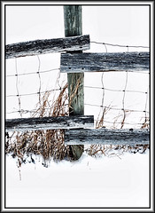 A cold Monday morning (Bob R.L. Evans) Tags: wirefence fencepost weather snow grasses composition vivid white highkey