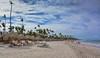 Iberostar Hotel and Resort Beach - Punta Cana Dominican Republic (mbell1975) Tags: puntacana laaltagracia dominicanrepublic do iberostar hotel resort beach punta cana dominican republic dr caribbean island bavaro sand water ocean atlantic sea palm tree trees
