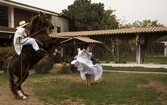 Bailando marinera - 1447 (Marcos GP) Tags: marcosgp lima peru baile dance marinera chalan caballo paso